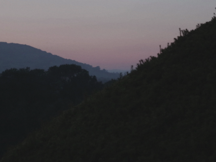 Still from the poetry film Morning. It's a landscape shot during sunset.