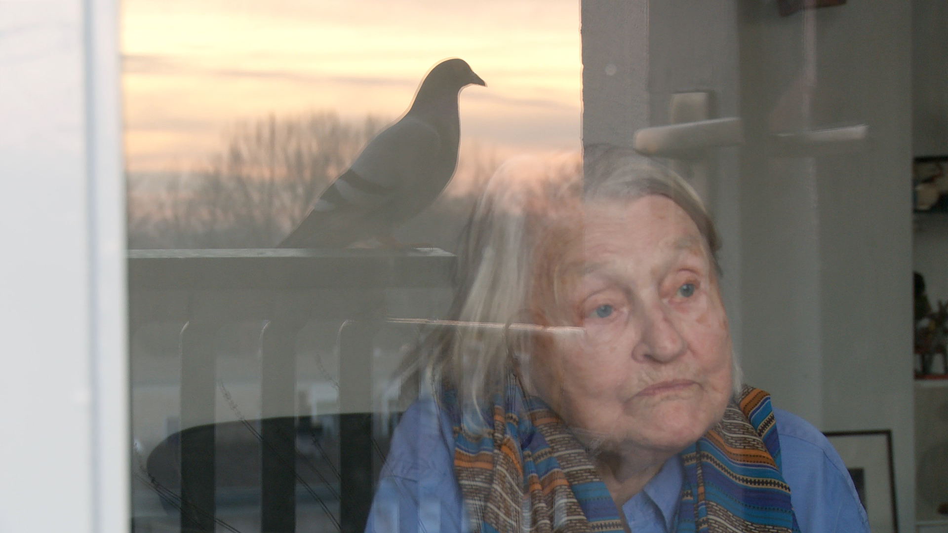 Still from the film Een klein beetje nog. Elisabeth is sitting in front of her window. The reflection of a pigeon is seen in the window.