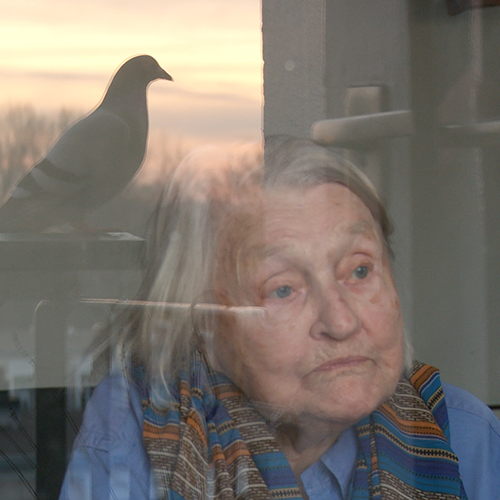 Thumbnail for the film Een klein beetje nog. Elisabeth is sitting in front of her window. The reflection of a pigeon is seen in the window.